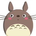 龙猫宝盒v1.0