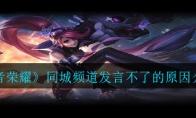 《王者荣耀》同城频道发言不了的原因介绍
