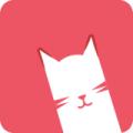百度云网盘猫咪视频