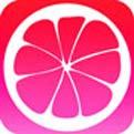 蜜柚app入口