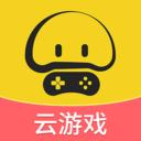 蘑菇云游戏