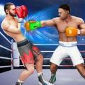 3D拳拳冠军游戏